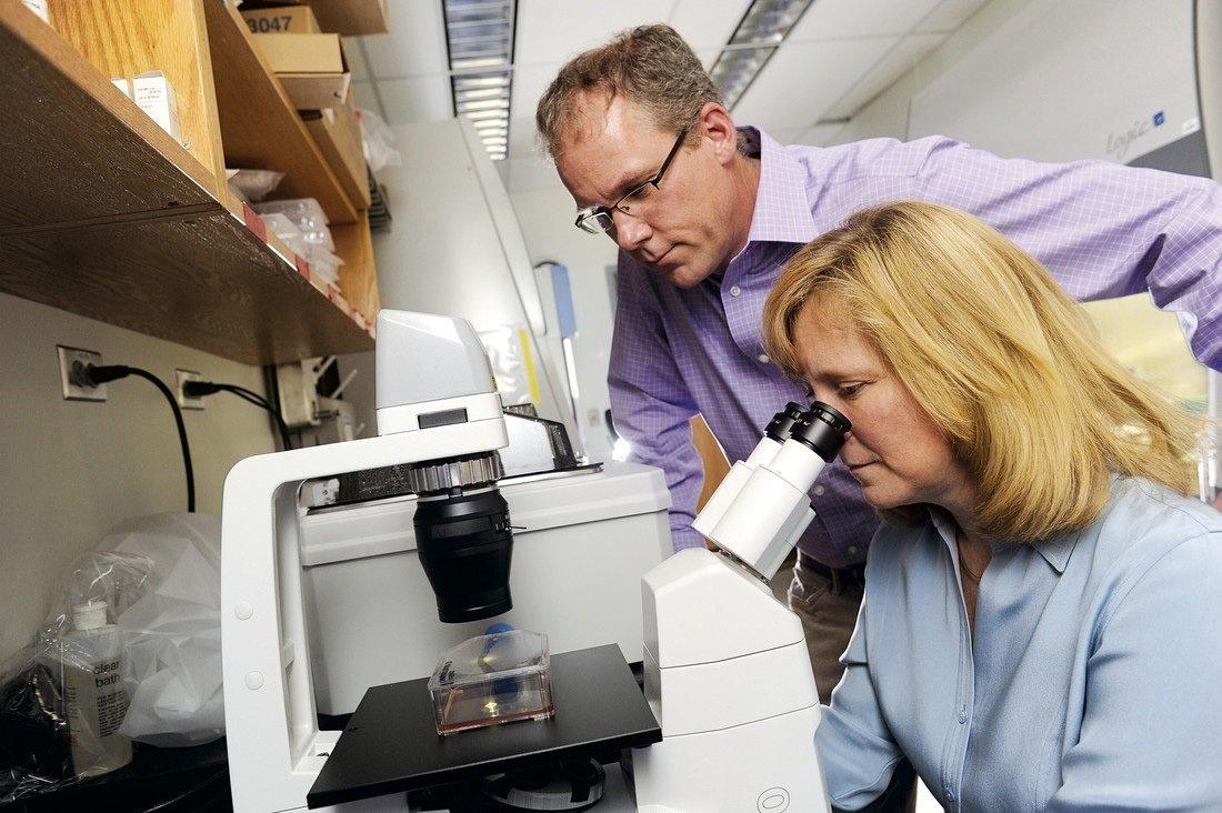Gedächtnis-B-Zellen in der Lunge möglicherweise wichtig für eine wirksamere Grippe-Impfungen