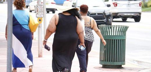 MwSt Fett verursachen pathogene Fettleibigkeit